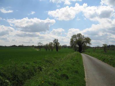 Bikeride_031